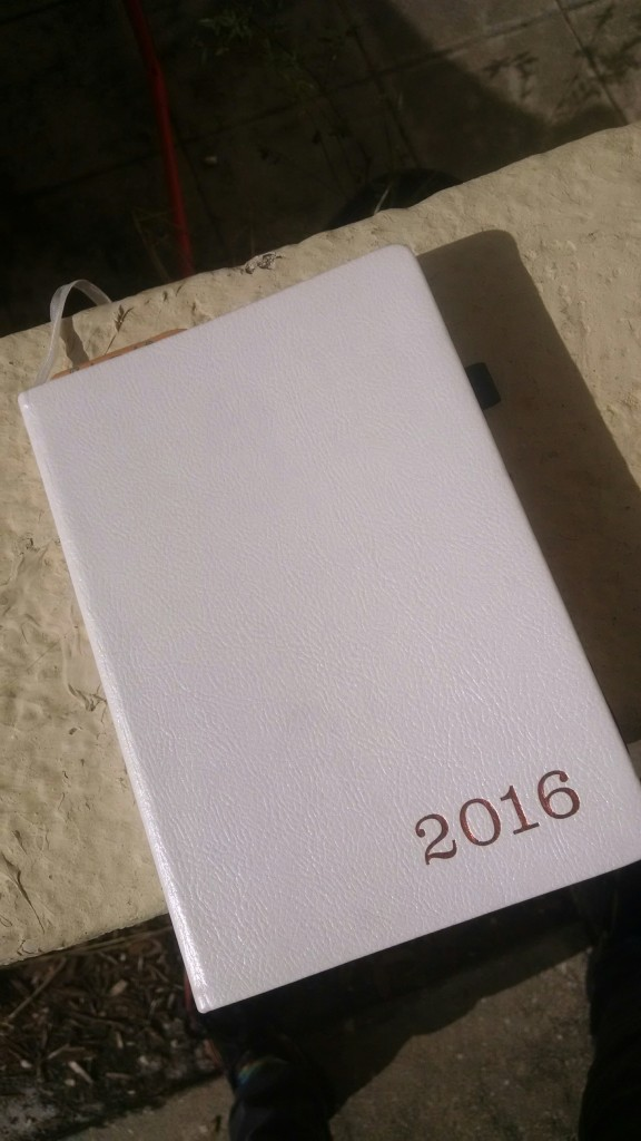 Shoutout to Writer's Atelier. I won this planner in a contest of theirs.